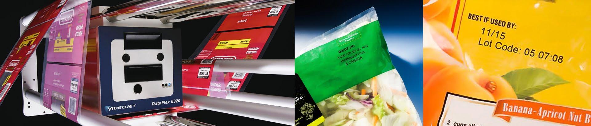 Máy in truyền nhiệt TTO_ngành rau - củ - quả
