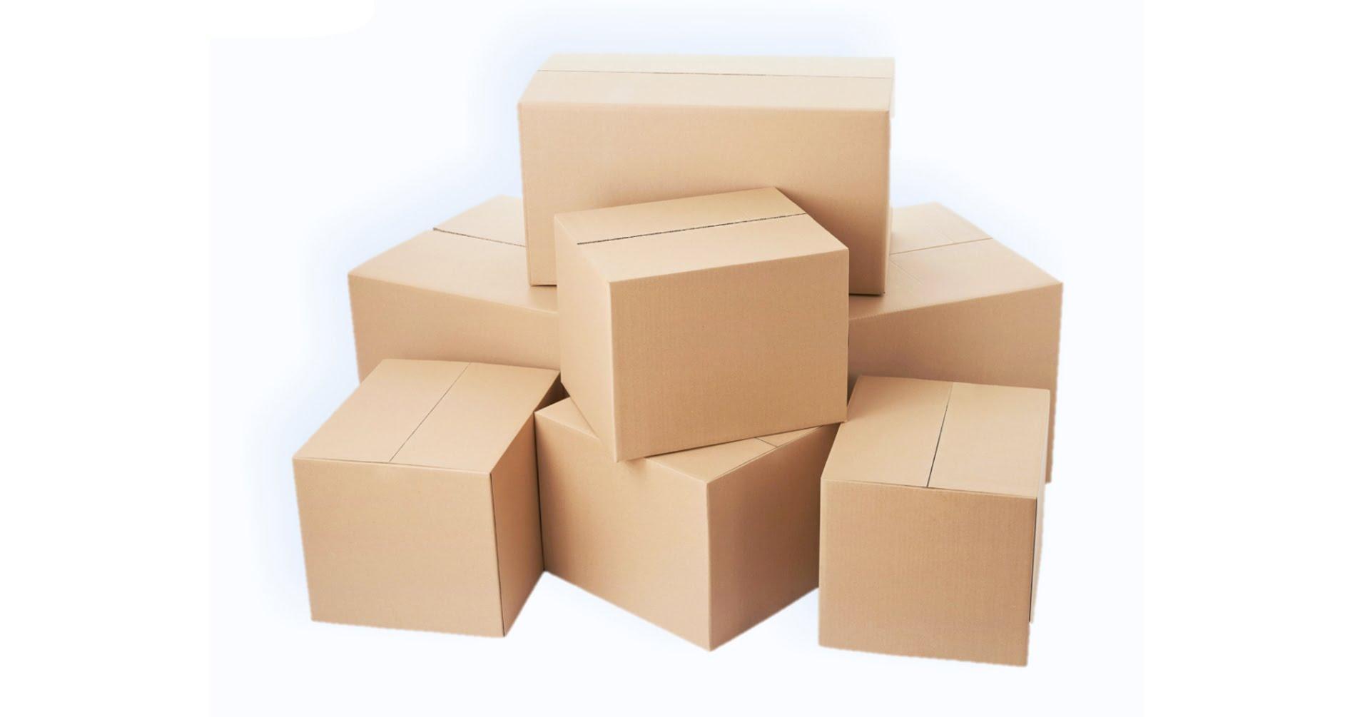 Bốc Xếp Thùng Hộp Carton - Máy Nâng Hàng Hóa Pallet