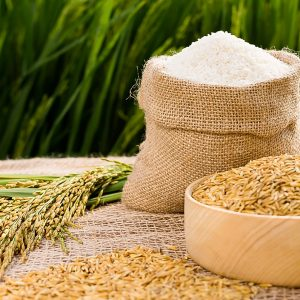 Máy dóng gói lúa gạo